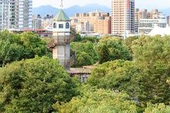 都市的森林 库存照片