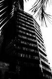 都市的横向 免版税库存图片