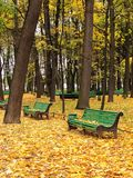 都市长凳空的公园 库存照片