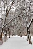 2010年都市风景俄国1月莫斯科冬天 降雪 库存照片