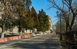 都市风景街道胡同路面树大厦现代蓝天离开了早晨秋天 库存图片