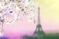 巴黎都市风景鸟瞰图与埃佛尔铁塔的在桃红色日落 葡萄酒色的图片 免版税库存照片