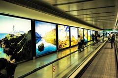 都柏林机场人,旅行带着在走道自动扶梯的手提箱的乘客在与爱尔兰的被突出的图象的行动t的 免版税图库摄影
