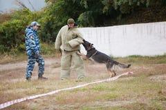 鄂木斯克,俄罗斯26 09 2014似犬培训中心 库存照片