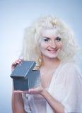 配件箱圣诞节女王/王后雪 免版税库存照片