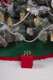 配件箱圣诞节礼品存在红色结构树 免版税库存照片