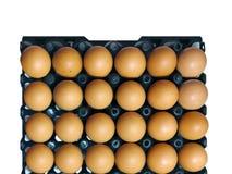 配件箱在卵黄质里面的被中断的鸡蛋鸡蛋 图库摄影