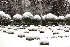 配件箱用雪报道的结构树剪切 库存图片