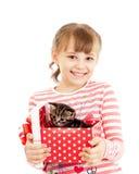 配件箱礼品女孩愉快的小猫 库存图片