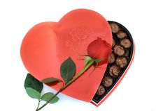 配件箱被塑造的重点玫瑰 免版税库存照片
