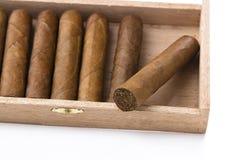 配件箱雪茄 免版税图库摄影