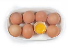 配件箱鸡蛋一 库存图片