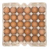 配件箱鸡蛋 免版税库存图片