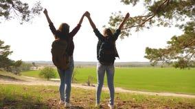 配合举她的手,庆祝胜利和享受风景的徒步旅行者女孩 通过假期旅行的妇女 股票视频