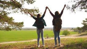 配合举她的手,庆祝胜利和享受风景的徒步旅行者女孩 通过假期旅行的妇女 影视素材