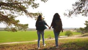 配合举她的手,庆祝胜利和享受风景的徒步旅行者女孩 通过假期旅行的妇女 免版税库存图片