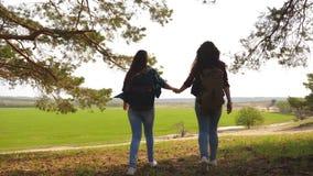 配合举她的手,庆祝胜利和享受风景的徒步旅行者女孩 通过假期旅行的妇女 库存照片