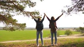 配合举她的手,庆祝胜利和享受风景的徒步旅行者女孩 通过假期旅行的妇女 库存图片