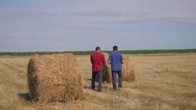 配合农业聪明的种田的概念 走两名人农夫生活方式的工作者学习领域的干草堆  股票视频