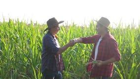 配合巧妙的农业概念慢动作录影 两人农艺师两农夫胜利握手配合 影视素材