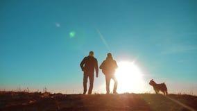 配合 两条游人徒步旅行者人和狗与背包在日落去远足旅行 慢动作录影 射击在后面 股票录像