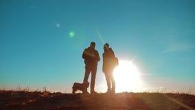 配合 两条游人徒步旅行者人和狗与背包在日落去远足旅行 慢动作录影 智能手机 股票视频