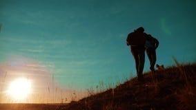 配合 享受日出的两个徒步旅行者走从山和狗的上面 慢动作录影 两个徒步旅行者与 影视素材