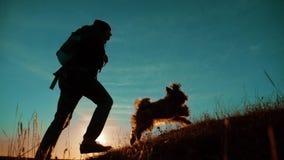 配合 享受日出的两个徒步旅行者走从山和狗的上面 慢动作录影 两个徒步旅行者与 股票视频