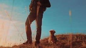 配合 有背包的两个游人徒步旅行者人在日落去远足旅行 徒步旅行者冒险,并且狗去走 股票录像