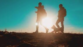 配合 有背包的两个游人徒步旅行者人在日落去远足旅行 徒步旅行者冒险,并且狗去走 影视素材