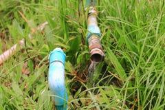 配管在草坪草打破的管泄漏用行动水 免版税图库摄影