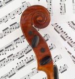 配置文件滚动小提琴 免版税图库摄影