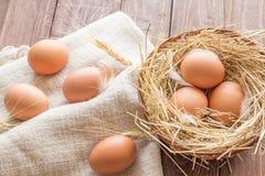配件箱在卵黄质里面的被中断的鸡蛋鸡蛋 免版税图库摄影