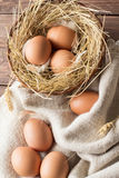 配件箱在卵黄质里面的被中断的鸡蛋鸡蛋 免版税库存图片