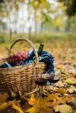 酒、葡萄和玻璃 免版税库存图片