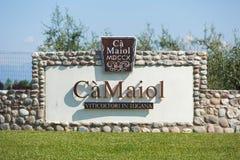 酒加州Maiol的生产 免版税库存照片