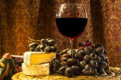 酒和咸味干乳酪乳酪 库存照片