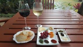 酒和干酪 免版税库存图片