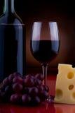 酒和干酪1 免版税库存照片