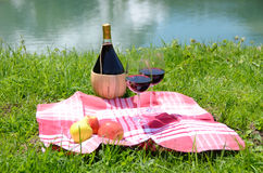 酒和果子供食在野餐 免版税图库摄影