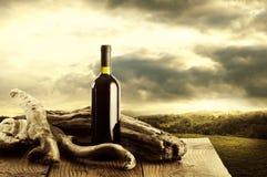 酒和葡萄园 免版税图库摄影