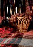 酒和葡萄在格子花呢披肩背景 免版税图库摄影