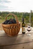 酒和葡萄在表上在葡萄园里 免版税库存照片