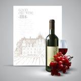 酒和葡萄树 免版税库存照片