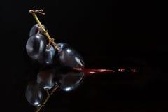 酒和葡萄栽培 库存照片