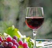 酒和葡萄 免版税库存照片