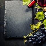 酒和葡萄 免版税库存图片