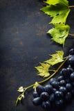 酒和葡萄 库存照片