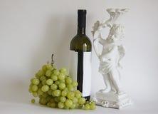 酒和葡萄 库存图片