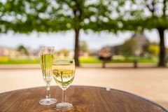 酒在杜乐丽花园 免版税库存照片